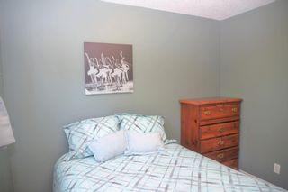 Photo 15: 18215 99 Avenue in Edmonton: Zone 20 House for sale : MLS®# E4249989