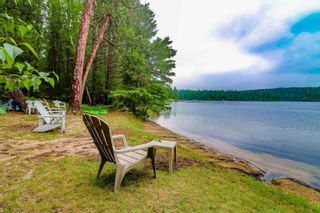 Photo 7: LK283 Summer Resort Location in Boys Township: Retail for sale : MLS®# TB212151