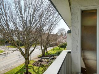 Photo 22: 305 3880 Shelbourne St in : SE Cedar Hill Condo for sale (Saanich East)  : MLS®# 872259