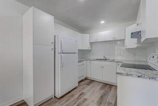 Photo 10: 4908 44 Avenue NE in Calgary: Whitehorn Semi Detached for sale : MLS®# A1129146