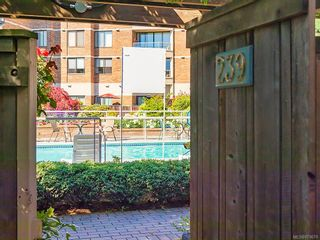 Photo 2: 239 Belleville St in : Vi James Bay Row/Townhouse for sale (Victoria)  : MLS®# 879079