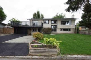 Photo 3: 22939 CLIFF Avenue in Maple Ridge: East Central House for sale : MLS®# R2112470