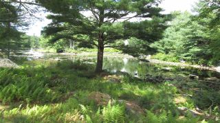 Photo 4: 7 McGillis Island Road in Middle Ohio: 407-Shelburne County Vacant Land for sale (South Shore)  : MLS®# 202016488