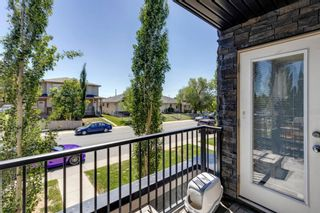 Photo 23: 4207 1317 27 Street SE in Calgary: Albert Park/Radisson Heights Apartment for sale : MLS®# A1126561