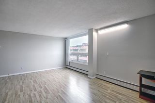 Photo 12: 508 314 14 Street NW in Calgary: Hillhurst Apartment for sale : MLS®# A1117580