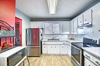 Photo 18: 1137 Berkley Drive NW in Calgary: Beddington Heights Semi Detached for sale : MLS®# A1136717