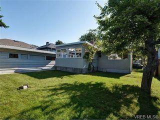 Photo 13: 2636 Victor St in VICTORIA: Vi Oaklands House for sale (Victoria)  : MLS®# 702369