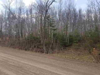 Photo 4: Campbell Hill Road in Campbell Hill: 108-Rural Pictou County Vacant Land for sale (Northern Region)  : MLS®# 202109771