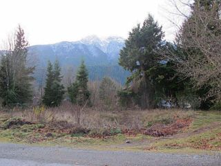 Photo 2: 1276 DEPOT Road in Squamish: Brackendale Land for sale : MLS®# V1037863