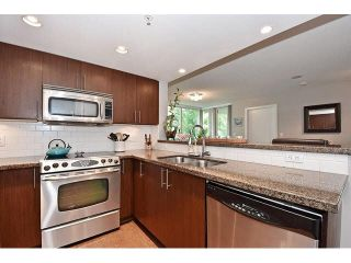 """Photo 6: 202 125 MILROSS Avenue in Vancouver: Mount Pleasant VE Condo for sale in """"CREEKSIDE"""" (Vancouver East)  : MLS®# V1142300"""