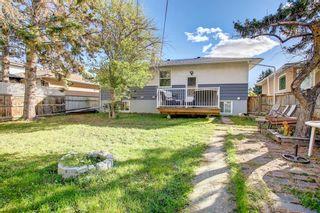 Photo 48: 1223 Richland Road NE in Calgary: Renfrew Detached for sale : MLS®# A1153557