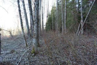 Photo 5: LOT A KLOECKNER Road in Smithers: Smithers - Rural Land for sale (Smithers And Area (Zone 54))  : MLS®# R2598861