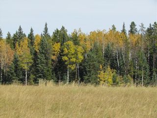 Photo 15: TWP Rd 310: Rural Mountain View County Land for sale : MLS®# C4292828