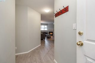 Photo 2: 210 3008 Washington Ave in VICTORIA: Vi Burnside Condo for sale (Victoria)  : MLS®# 804493