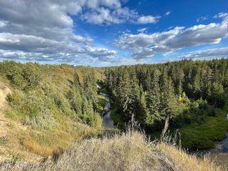 Photo 22: 1138 SADDLEBACK Road in Edmonton: Zone 16 Carriage for sale : MLS®# E4263349