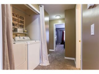 Photo 14: # 34 23575 119TH AV in Maple Ridge: Cottonwood MR Condo for sale : MLS®# V1108811