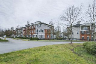 """Photo 18: 35 11067 BARNSTON VIEW Road in Pitt Meadows: South Meadows Townhouse for sale in """"COHO"""" : MLS®# R2344375"""