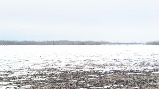 Photo 11: 55506 RGE RD 222: Rural Sturgeon County Land Commercial for sale : MLS®# E4232910