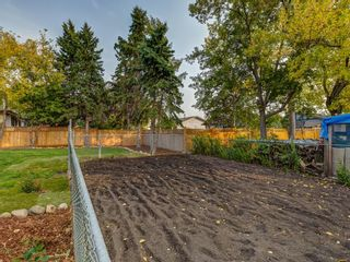 Photo 46: 1233 Smith Avenue: Crossfield Detached for sale : MLS®# A1034892