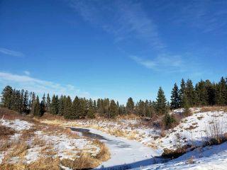 Photo 45: 1190 Adamson Drive in Edmonton: Zone 55 House for sale : MLS®# E4230912