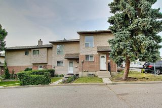 Photo 3: 19 64 Whitnel Court NE in Calgary: Whitehorn Row/Townhouse for sale : MLS®# A1136758
