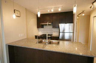 Photo 15: 1512 5811 NO 3 Road in Acqua: Home for sale : MLS®# V958357