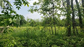 Photo 3: 5221 PETTEM ROAD in Elizabethtown: Vacant Land for sale : MLS®# 1246720