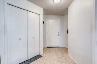 Photo 17: 417 1717 60 Street SE in Calgary: Red Carpet Apartment for sale : MLS®# A1133499