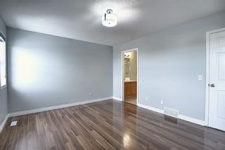 Photo 20: 141 SADDLEMEAD Road in Calgary: Saddle Ridge Detached for sale : MLS®# A1052360