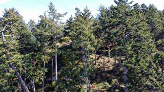 Photo 15: 277 LAURA POINT Road: Mayne Island Land for sale (Islands-Van. & Gulf)  : MLS®# R2554109