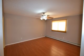 Photo 15: 102 2 ALPINE Boulevard: St. Albert Condo for sale : MLS®# E4224225