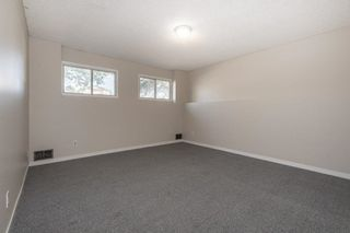Photo 19: 15916 100 Street in Edmonton: Zone 27 House for sale : MLS®# E4264242