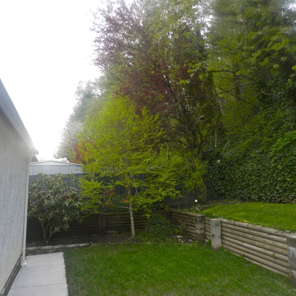Photo 10: Photos: 33305 ROSE Avenue in Mission: Mission BC House for sale : MLS®# F1211840