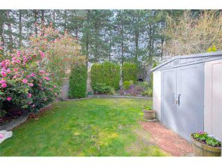 "Photo 8: 125 2721 ATLIN Place in Coquitlam: Coquitlam East Townhouse for sale in ""THE TERRACES"" : MLS®# V1057013"