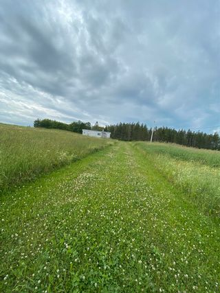 Photo 13: 519 JW MCCULLOCH Road in Meiklefield: 108-Rural Pictou County Farm for sale (Northern Region)  : MLS®# 202117518