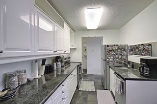 Photo 12: 202 1513 26th Avenue SW 26th Avenue SW in Calgary: South Calgary Apartment for sale : MLS®# A1117931