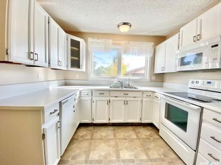 Photo 15: 116 Wright Crescent in Biggar: Residential for sale : MLS®# SK871376