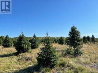 Photo 27: - Saint David Ridge in St. Stephen: Vacant Land for sale : MLS®# NB063465