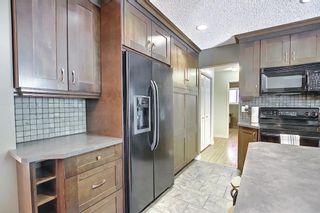 Photo 12: 9623 19 Street SW in Calgary: Palliser Detached for sale : MLS®# A1097991
