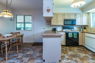 Photo 48: 4365 Munster Rd in : CV Courtenay West House for sale (Comox Valley)  : MLS®# 872010