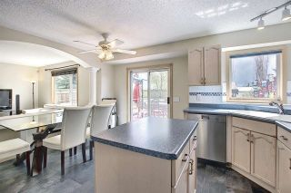 Photo 15: 219 HOLLINGER Close NW in Edmonton: Zone 35 House for sale : MLS®# E4243524