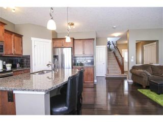 Photo 13: 659 COPPERPOND Circle SE in Calgary: Copperfield House for sale : MLS®# C4001282