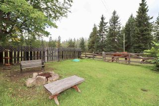 Photo 7: 12925 TELKWA COALMINE Road in Telkwa: Smithers - Rural House for sale (Smithers And Area (Zone 54))  : MLS®# R2434093