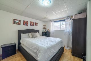 Photo 19: 4333 58 Street NE in Calgary: Temple Detached for sale : MLS®# A1092710