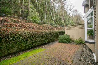 """Photo 19: 33 2736 ATLIN Place in Coquitlam: Coquitlam East Townhouse for sale in """"CEDAR GREEN ESTATES"""" : MLS®# R2040870"""