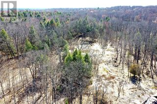 Photo 5: 0 COUNTY ROAD 36 in Bobcaygeon: Vacant Land for sale : MLS®# 40095128