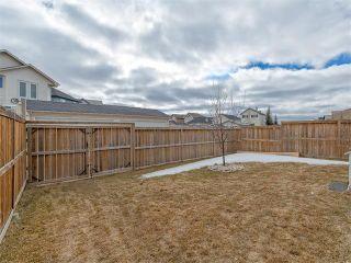 Photo 25: 154 SADDLEMONT Boulevard NE in Calgary: Saddle Ridge House for sale : MLS®# C4105563