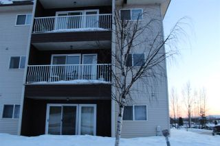 Photo 21: 201 101 MCINTYRE Drive in Mackenzie: Mackenzie -Town Condo for sale (Mackenzie (Zone 69))  : MLS®# R2536279