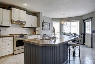 Photo 14: 250 Mt Douglas Court SE in Calgary: McKenzie Lake Detached for sale : MLS®# A1086547