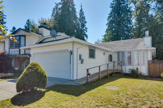 Photo 1: 20208 116B Avenue in Maple Ridge: Southwest Maple Ridge House for sale : MLS®# R2116409